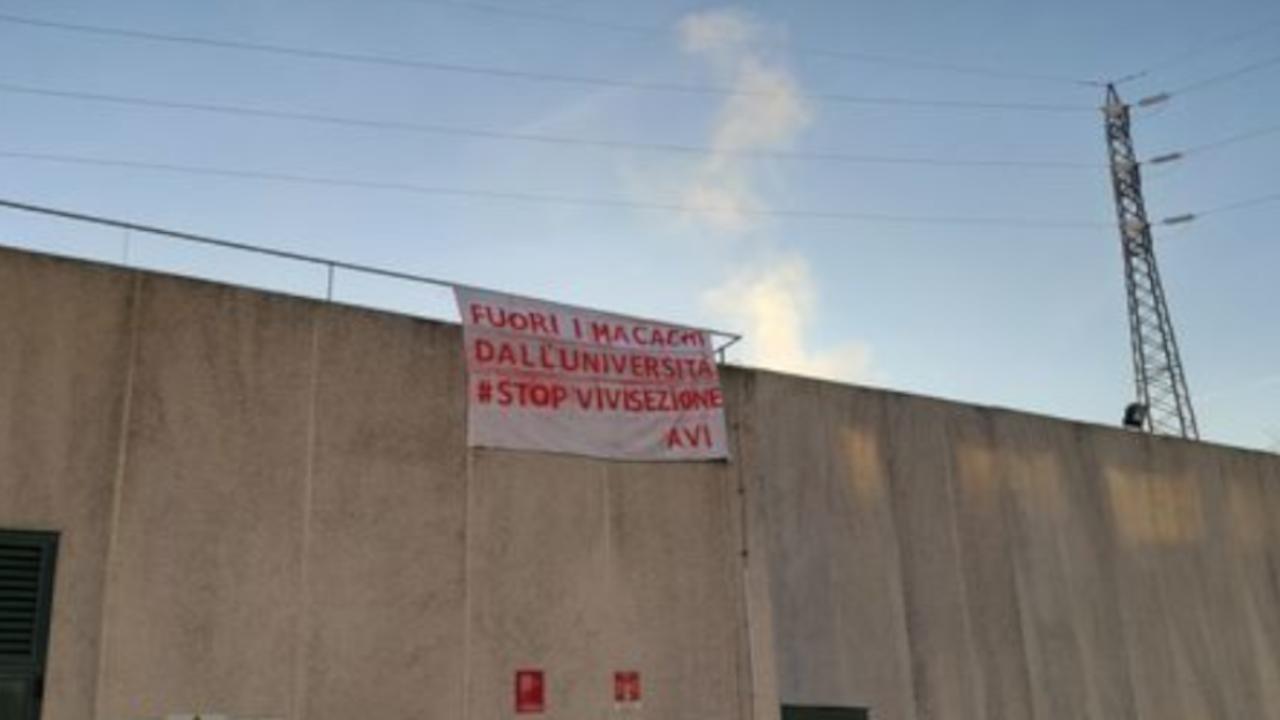 Animalisti su tetto ateneo a Parma: Grignaschi, è follia!