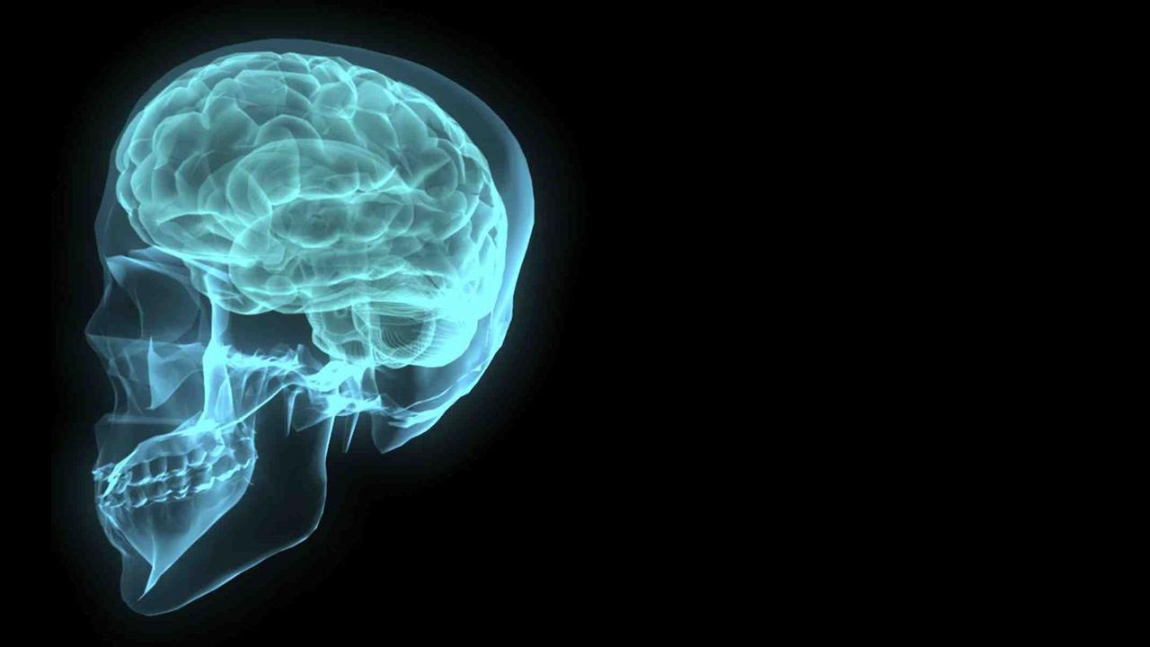 Una ricerca per curare l'epilessia con tessuti cerebrali creati in laboratorio