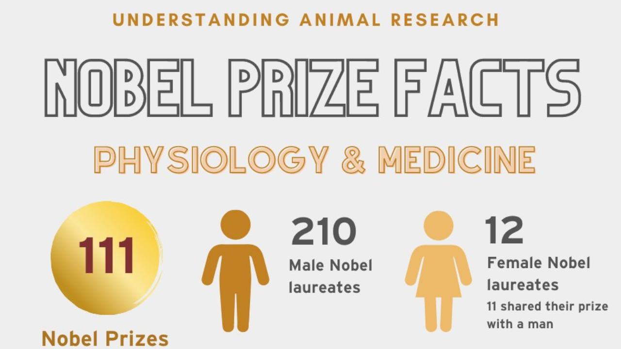 Premio Nobel agli scienziati che hanno scoperto il virus dell'epatite C
