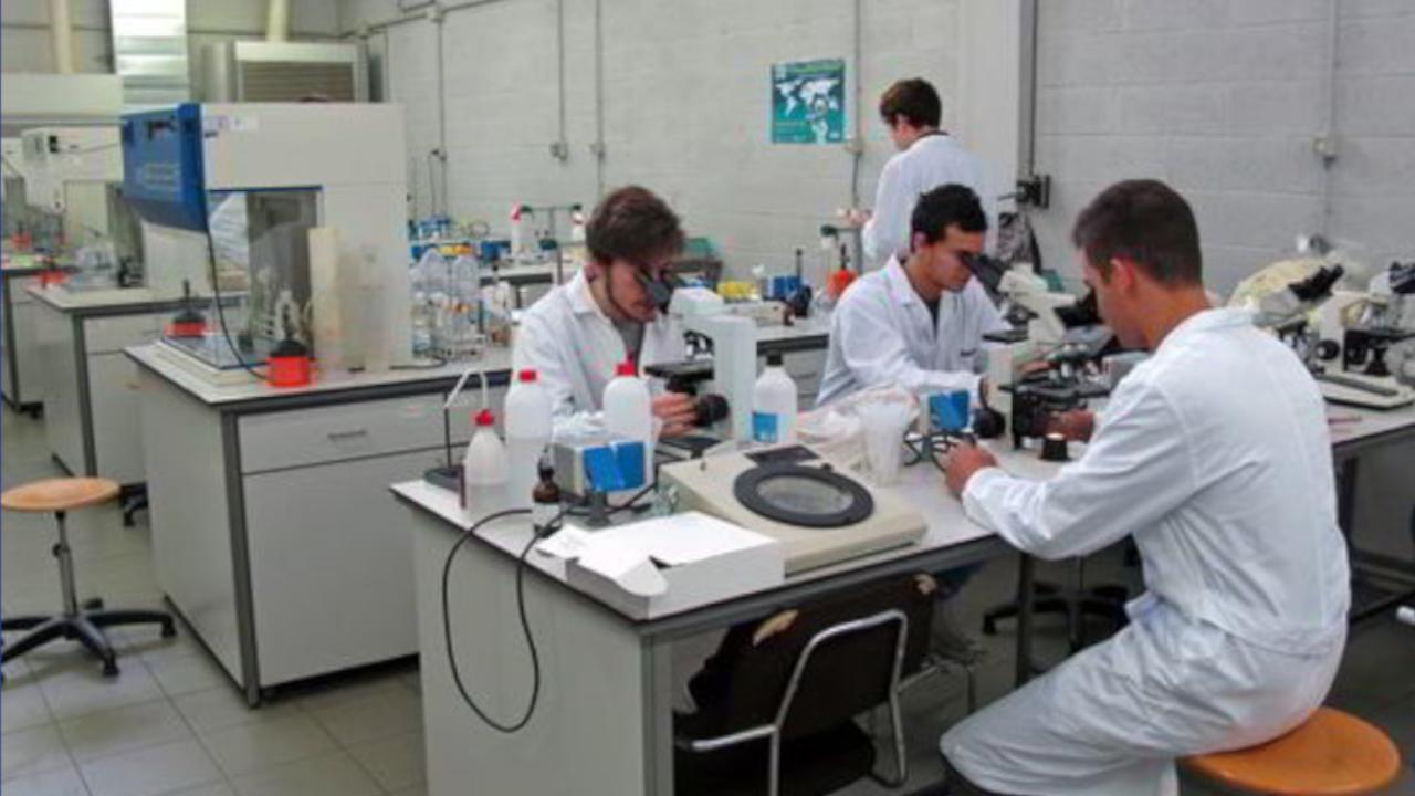 Ricerca scientifica, UniCa chiede di non fermare la sperimentazione animale